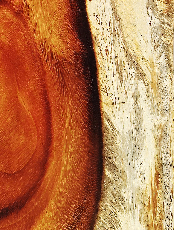 Encimeras de madera