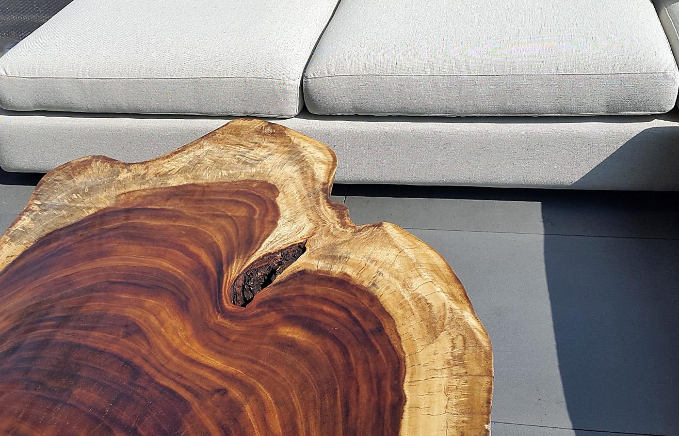 About parota wood